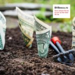 Ce rezultate financiare la 9 luni avem, cum sunt si la ce dividende sa ne asteptam